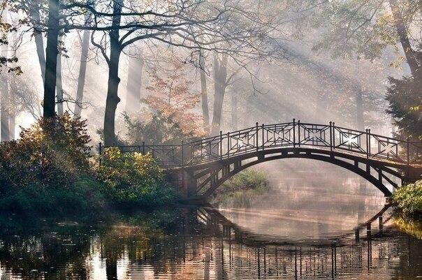 Самые красивые и неизвестные парки в Москве