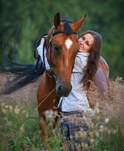 Где покататься на лошадях в Москве и Подмосковье?