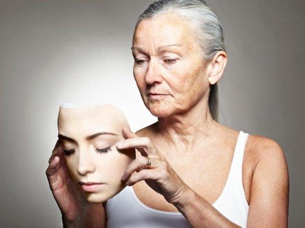 Разработанное в МГУ «лекарство от старости» может появиться в аптеках через два-три года