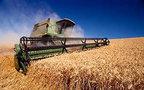 Россия распродает интервенционный зерновой фонд. Чтобы вновь наполнить его импортным зерном